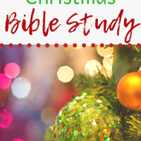 The Joy of Christmas - Bible Study