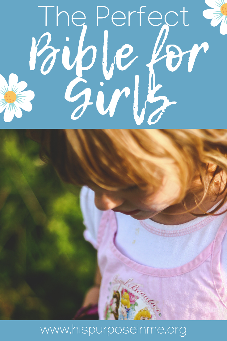Have you been looking for a bible for your girl? There are many options, but a bible like this is going to be perfect for her. Kids love colorful books that attract them to read, play and learn. Take a look at this bible that is perfect for girls!